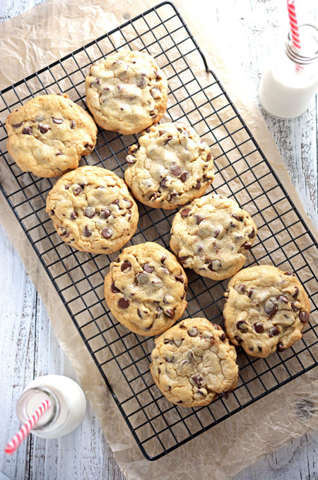 Best Big Fat Chewy Chocolate Chip Cookie